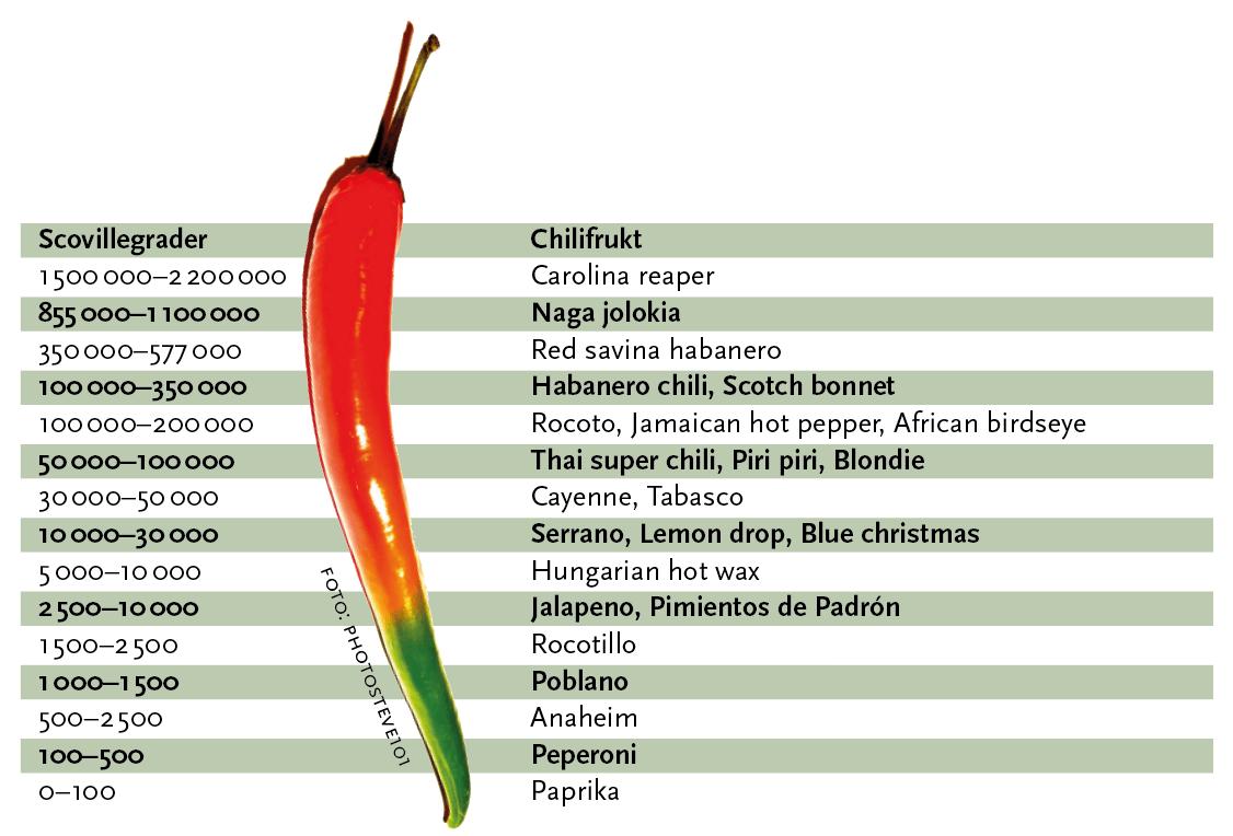 Starkhets Skala Chili
